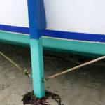 Photo, photographie de détail de coque de bateau du Finistère, bleu, blanc, vert, noir, avec une béquille, une corde ou un cordage gris et du goémon sur le sable @ Christophe Pluchon
