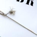 Photo, photographie de détail de coque de bateau du Finistère, bleu, blanc, gris et noir, du quartier maritime de Brest, avec une corde ou un cordage @ Christophe Pluchon