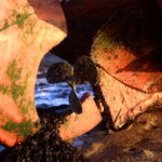 Photo, photographie de détail de coque de bateau du Finistère, marron, orange, bleu, noir, avec un gouvernail, une hélice et du goémon sur le sable @ Christophe Pluchon